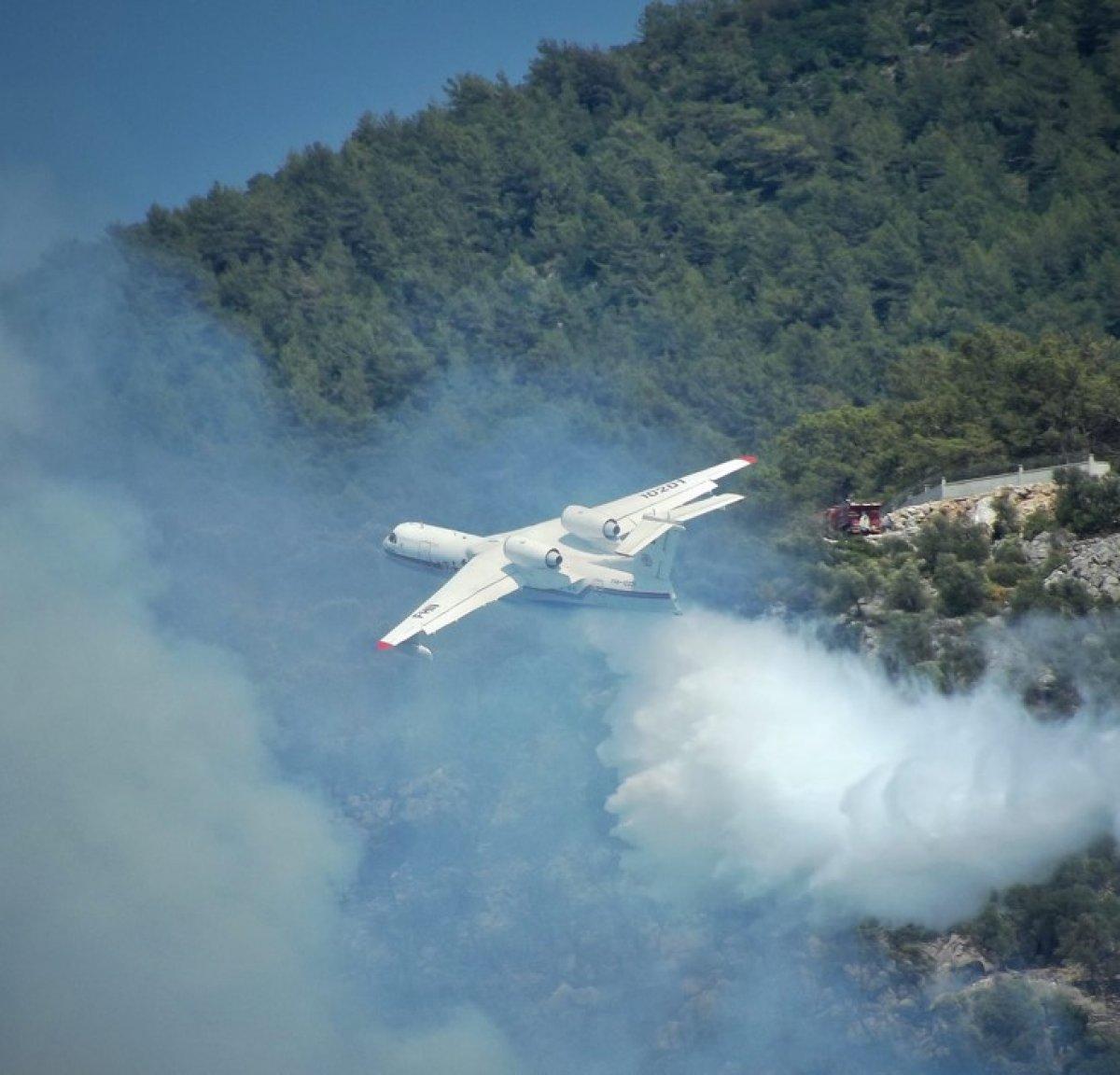Azerbaycan yangın söndürme uçağından, Dalaman yangınına müdahale #1
