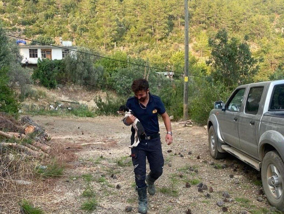 Manavgat ta görev alan Bolulu itfaiyeciler evlerine döndü #6