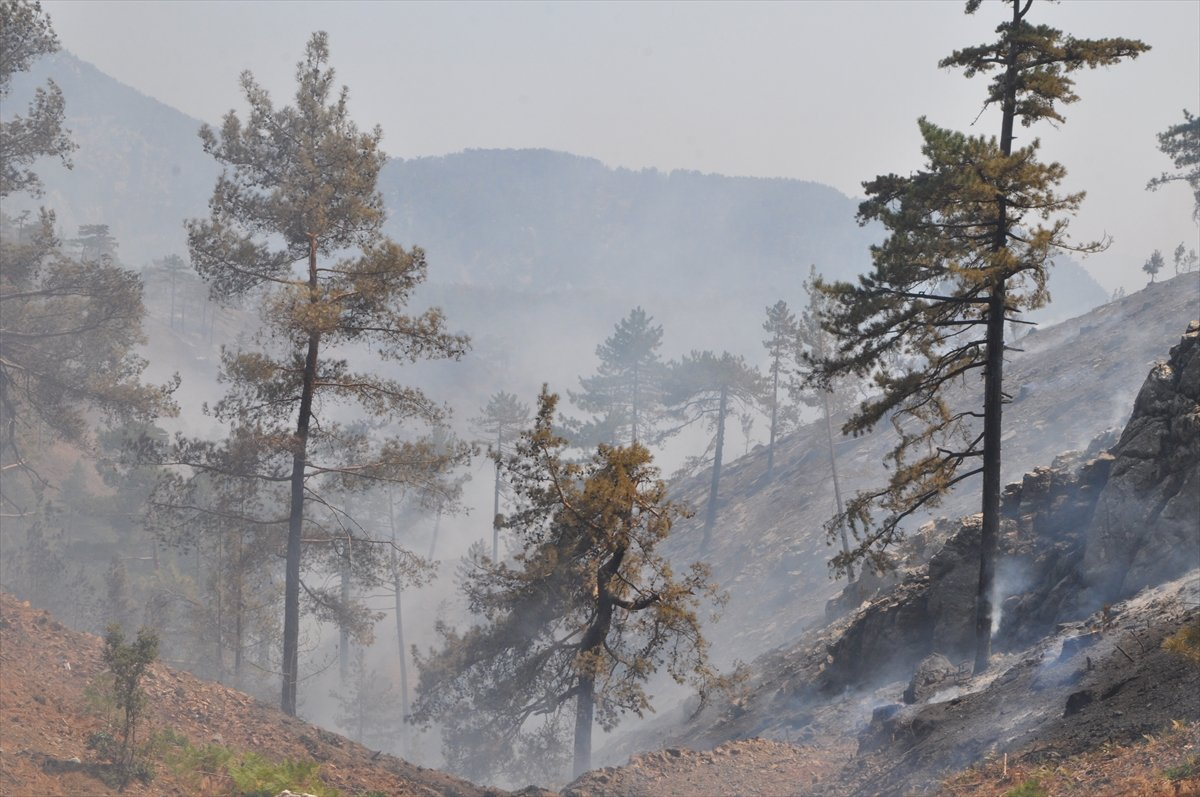 Bekir Pakdemirli: Milas ve Köyceğiz dışında tüm yangınlar kontrol altında #9