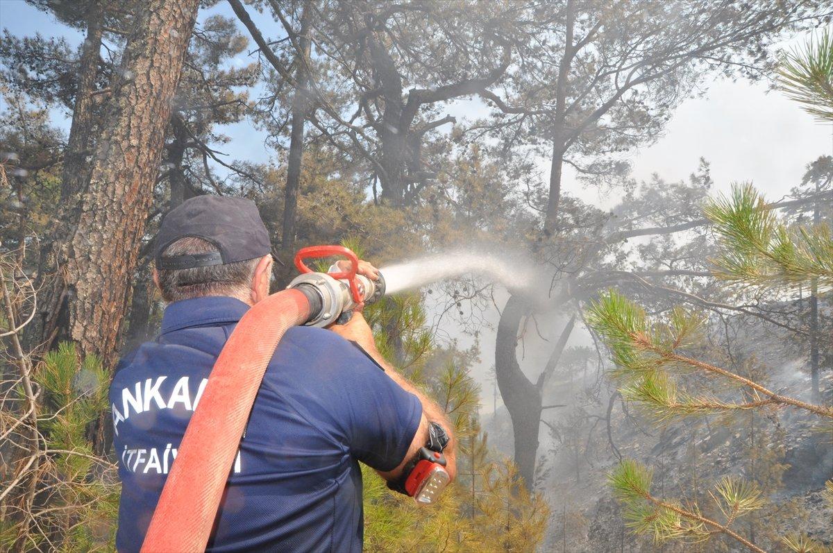 Bekir Pakdemirli: Milas ve Köyceğiz dışında tüm yangınlar kontrol altında #8