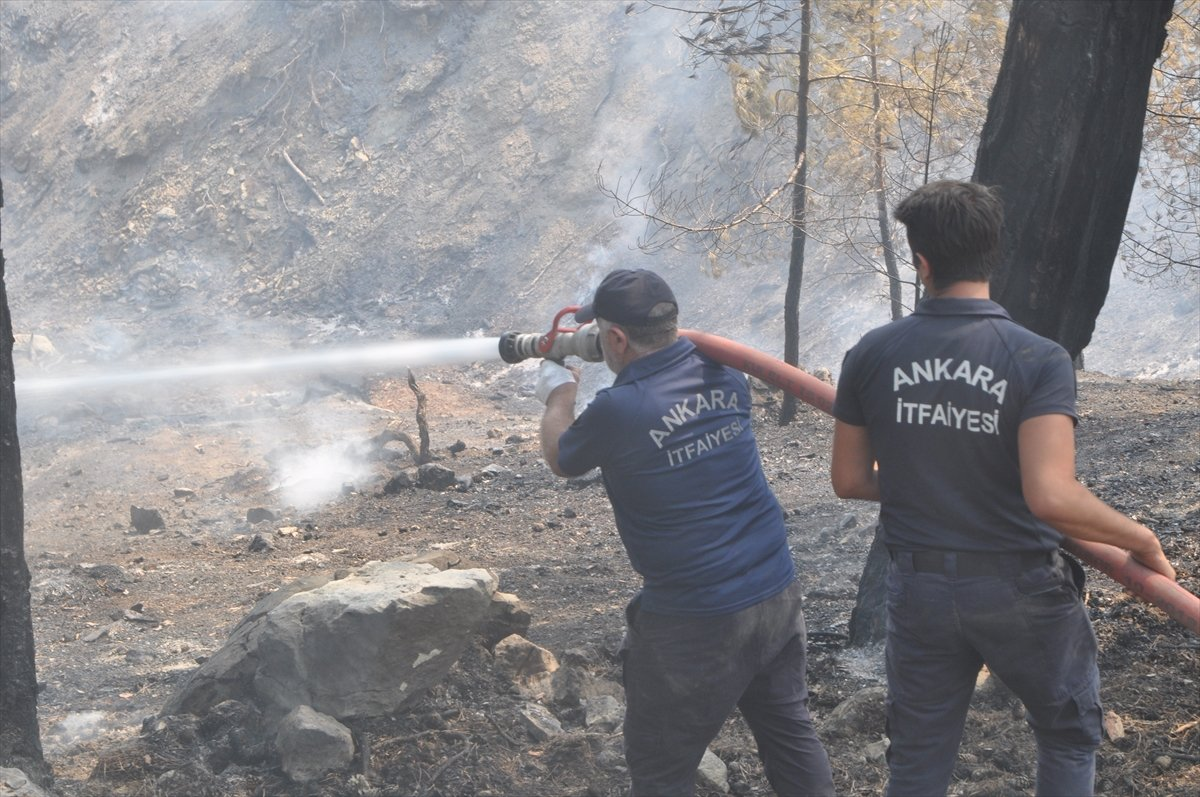 Bekir Pakdemirli: Milas ve Köyceğiz dışında tüm yangınlar kontrol altında #7