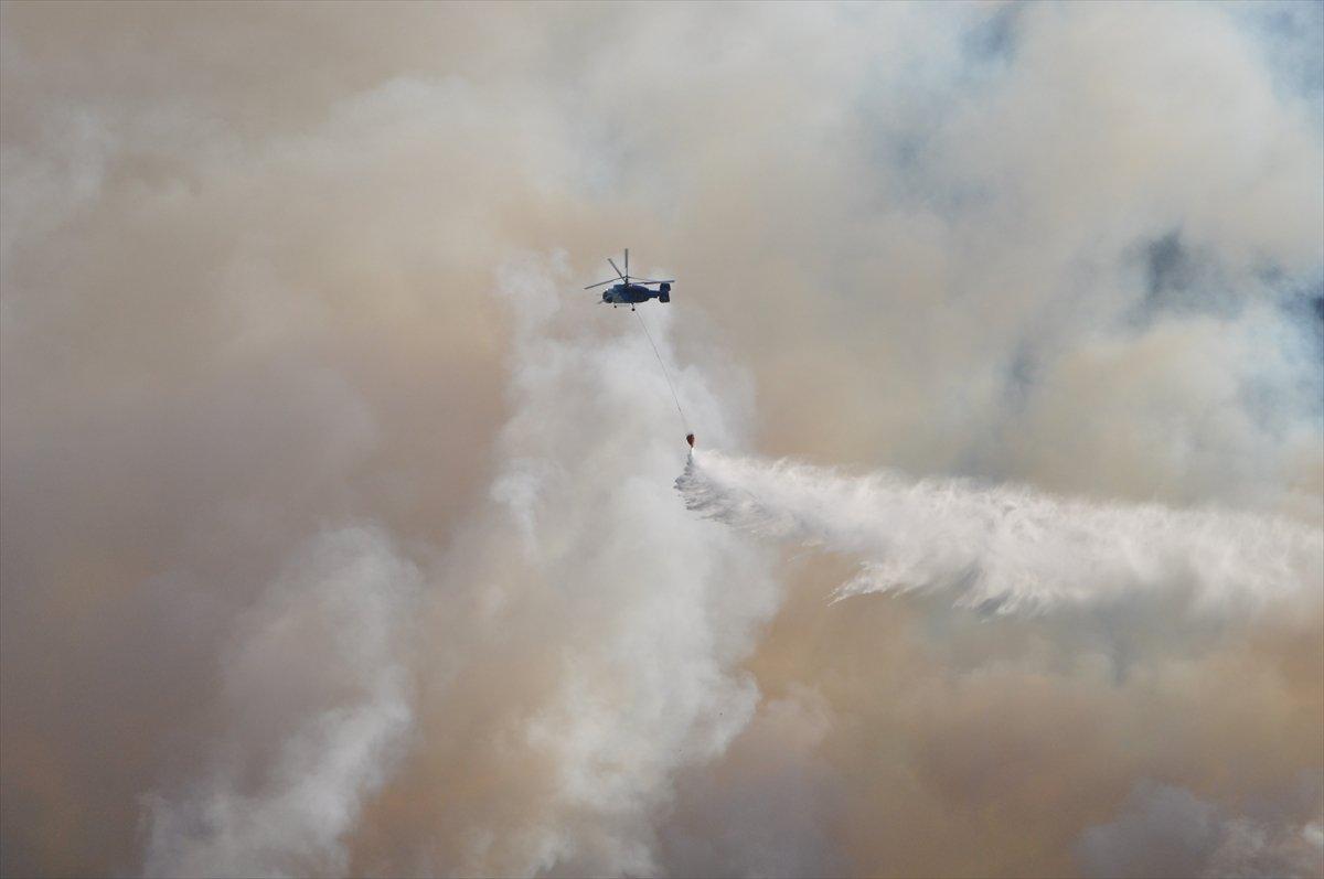 Bekir Pakdemirli: Milas ve Köyceğiz dışında tüm yangınlar kontrol altında #6