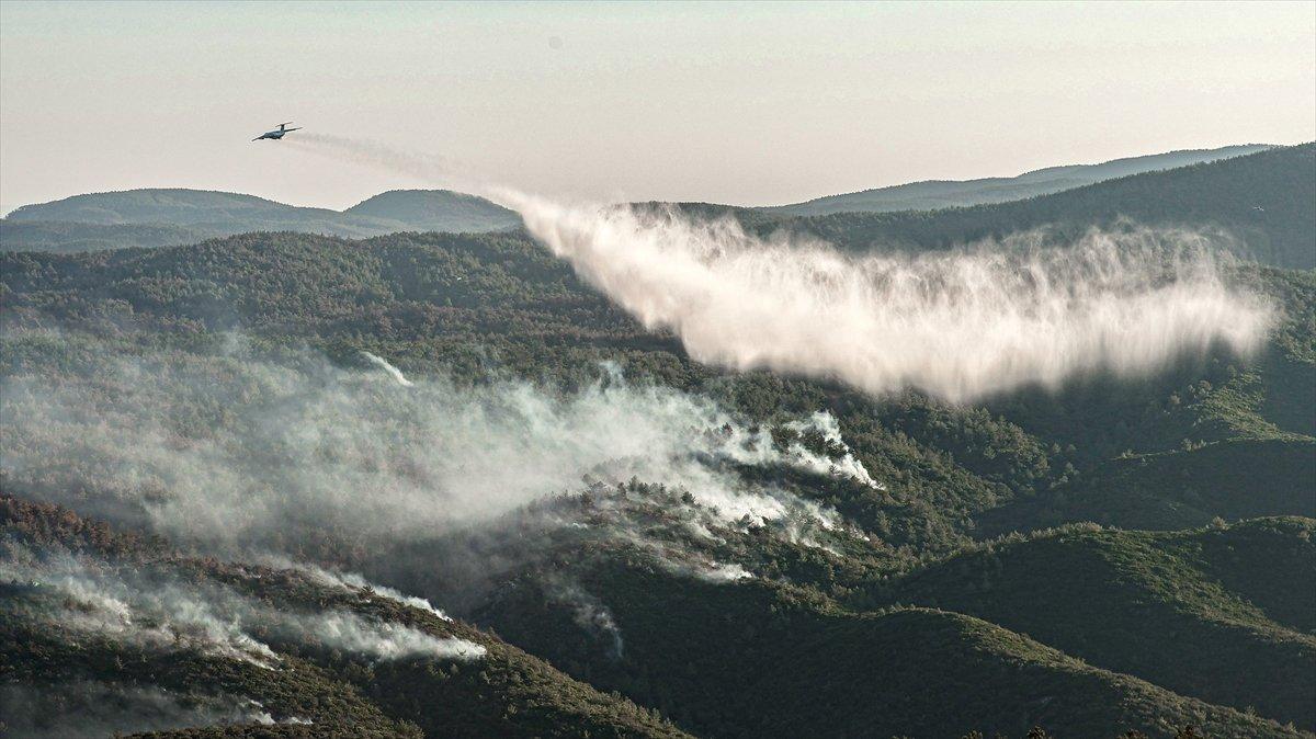 Bekir Pakdemirli: Milas ve Köyceğiz dışında tüm yangınlar kontrol altında #4