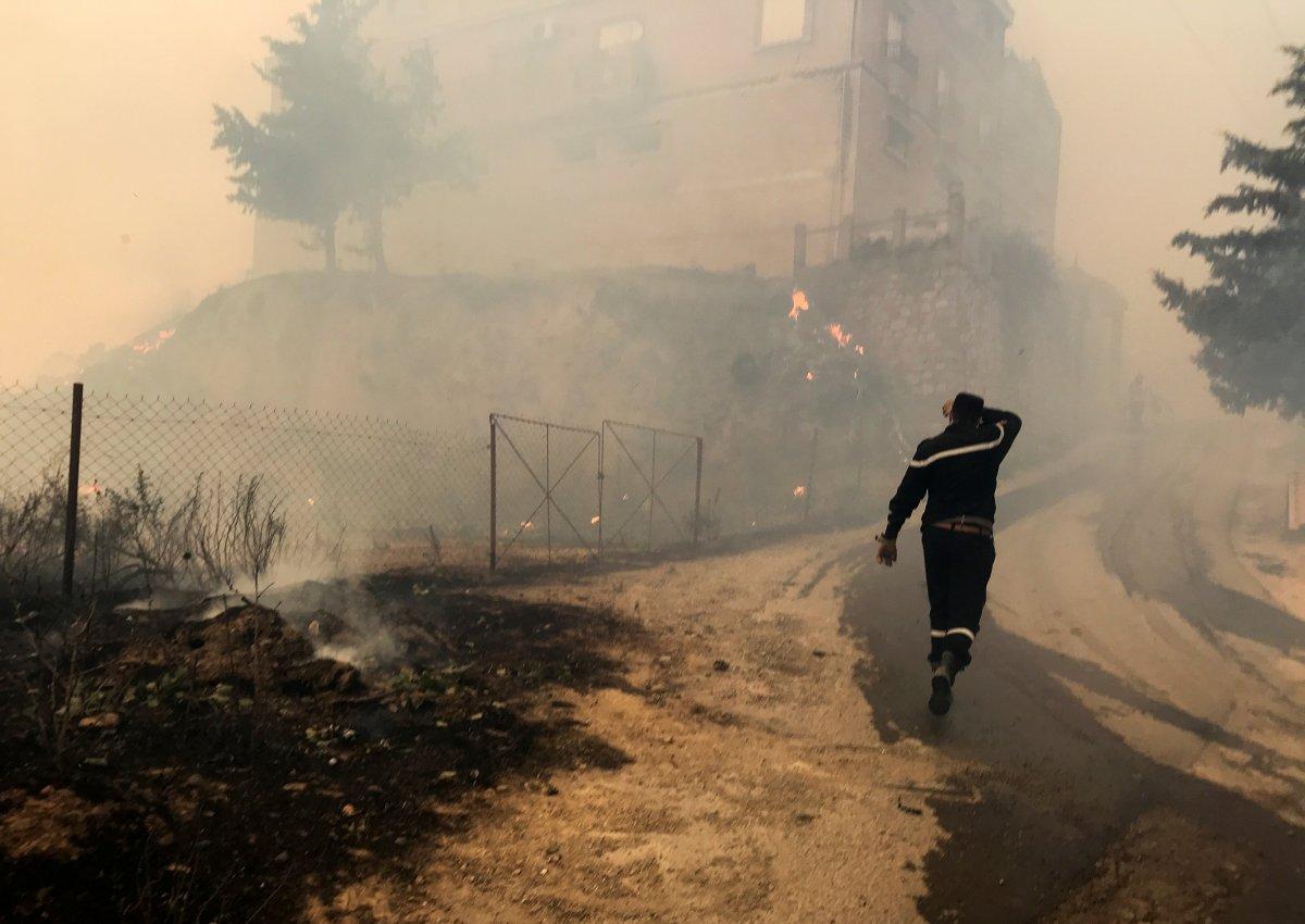 Cezayir deki yangınlarda 42 kişi hayatını kaybetti #1