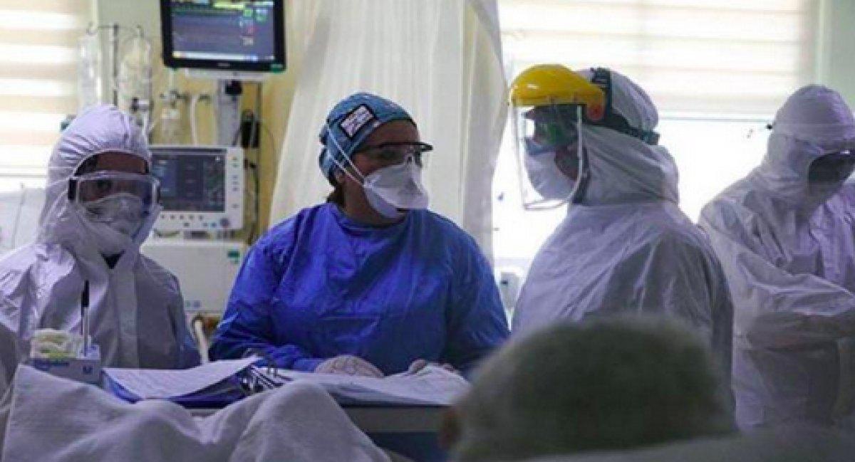 Marburg Humması virüsü Gine de görüldü #2