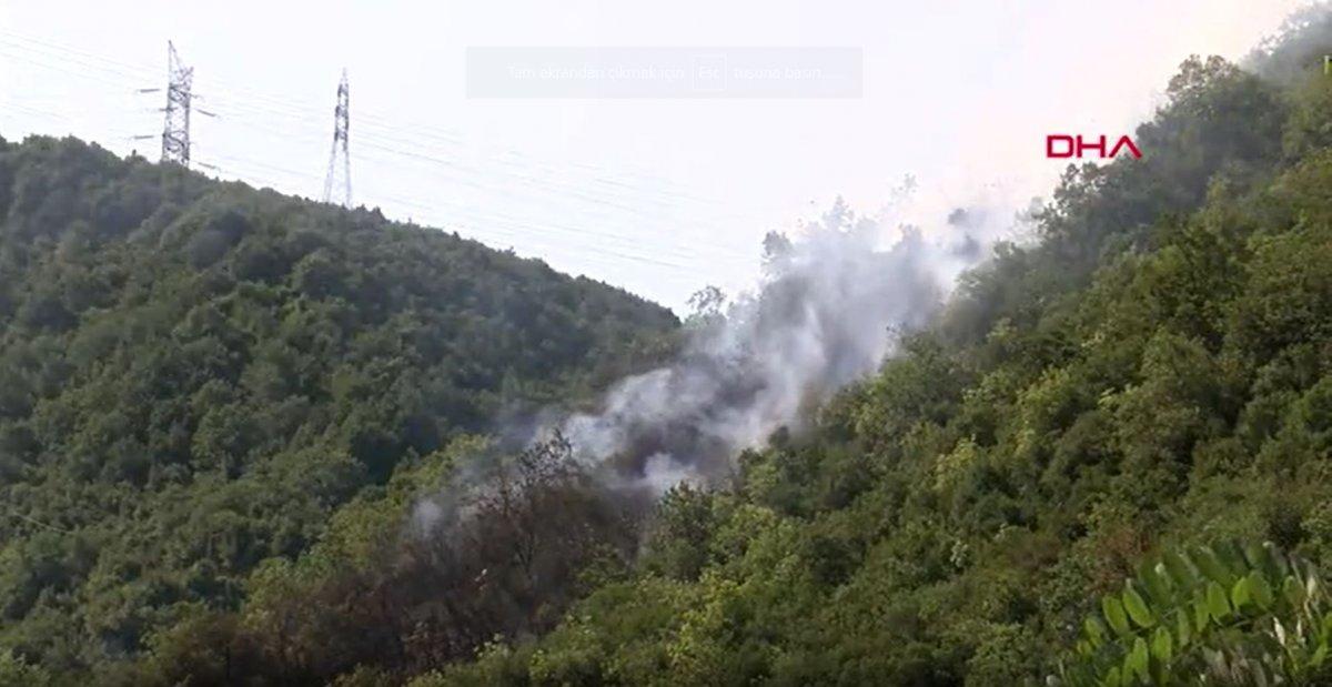 Sarıyer de orman yangını #2
