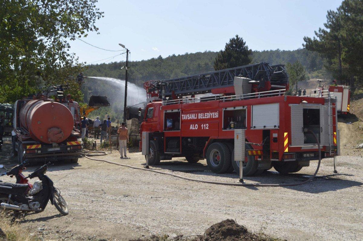 Sarıyer de orman yangını #5