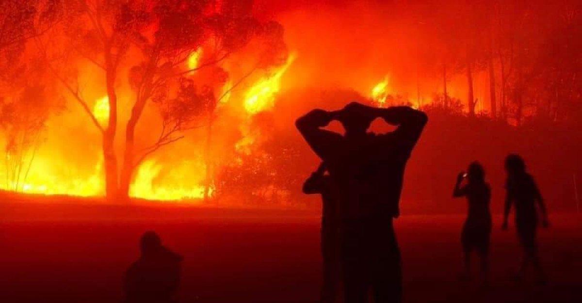 Cezayir deki yangınlarda 42 kişi hayatını kaybetti #4