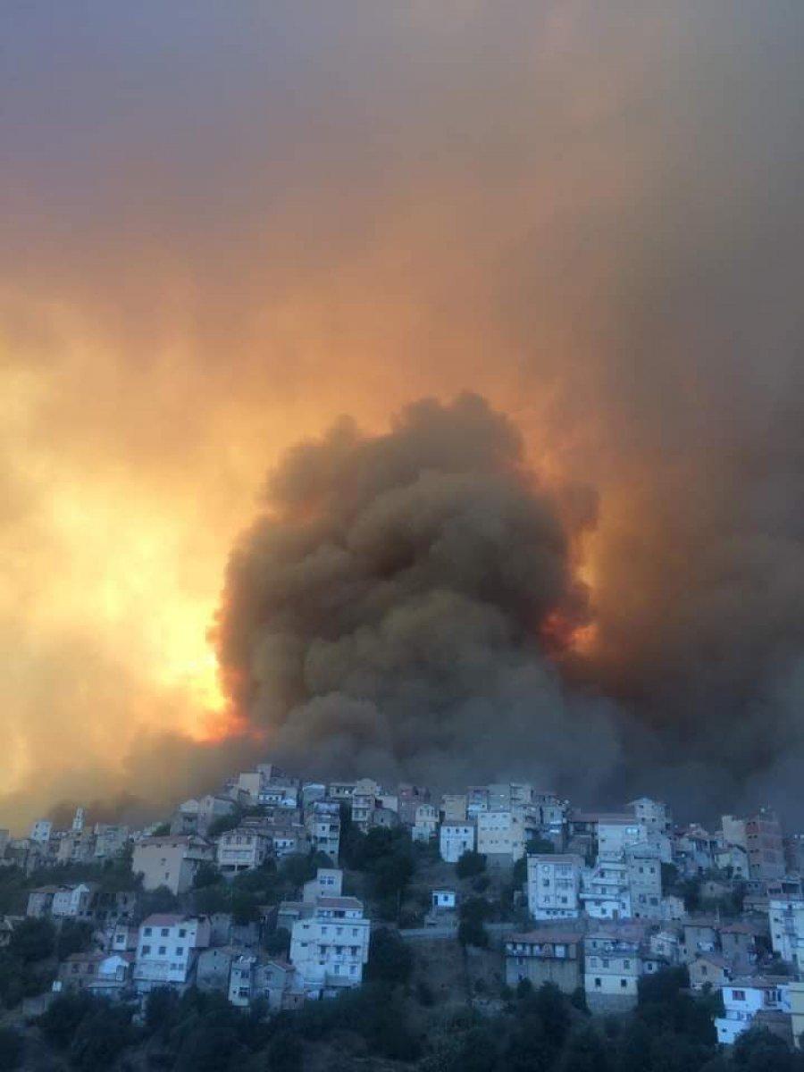 Cezayir deki yangınlarda 42 kişi hayatını kaybetti #2