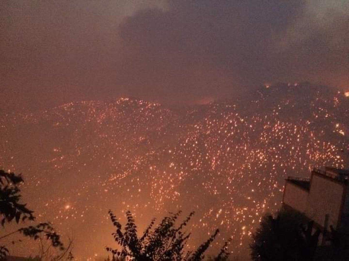 Cezayir deki yangınlarda 42 kişi hayatını kaybetti #3