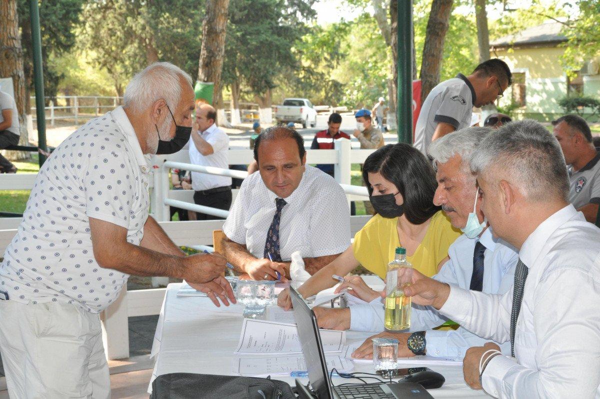 68 safkan Arap tayı, 8,5 milyon TL ye satıldı #2