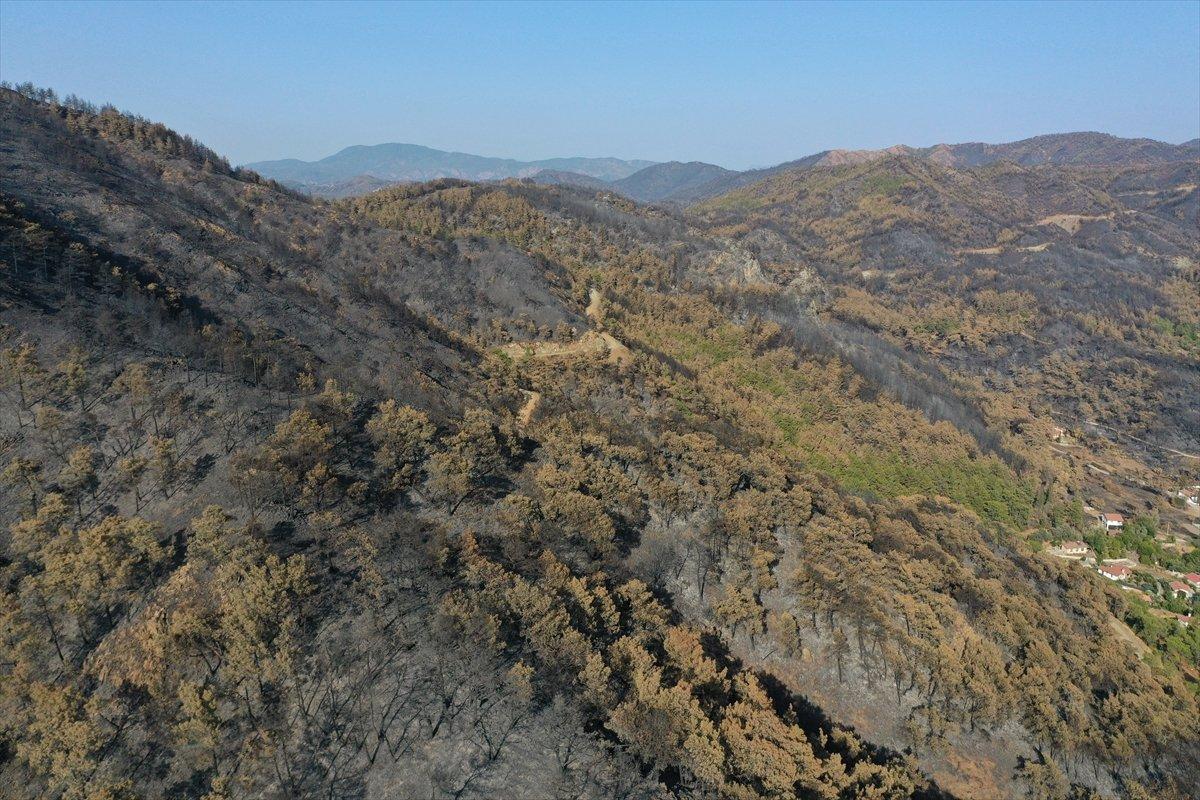 Marmaris Kızkumu Plajı çevresinde yanan ormanlık alanlar havadan görüntülendi #6