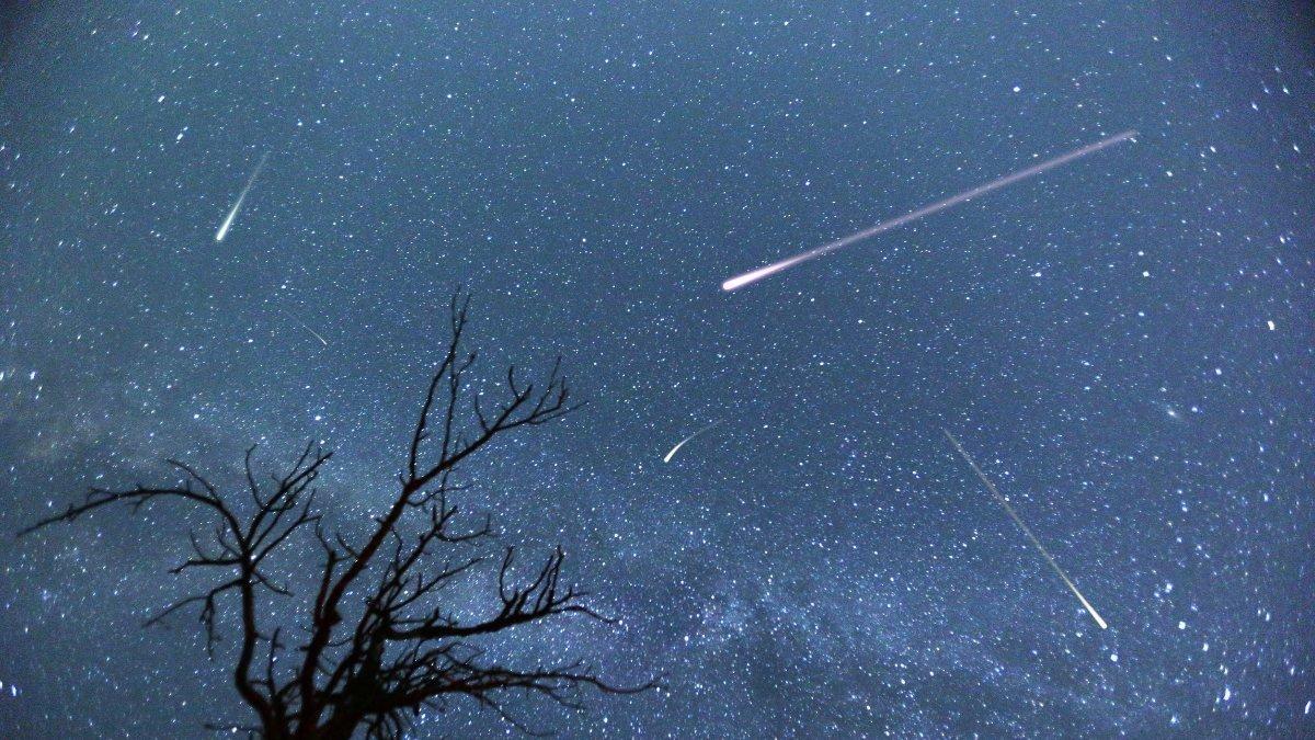Perseid meteor yağmuru, bugünden itibaren izlenebilecek