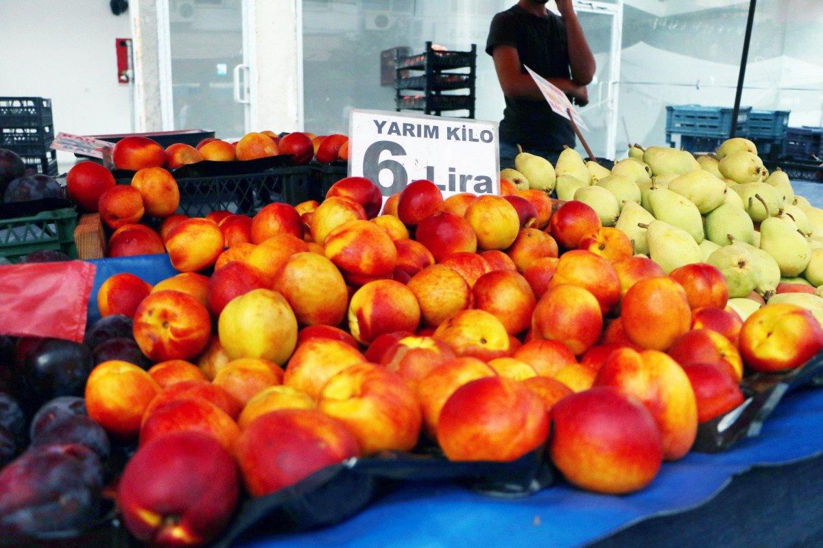 Şeftali ve nektarin bahçede 6 markette 18 lira #6