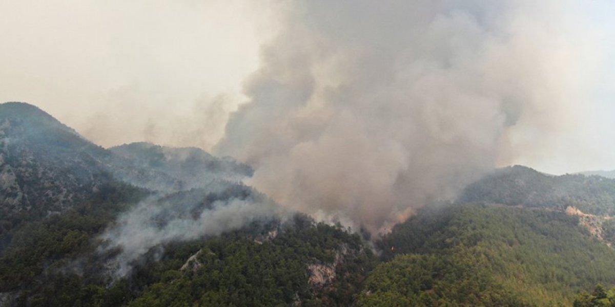 Muğla Köyceğiz yangını kontrol altına alındı #4