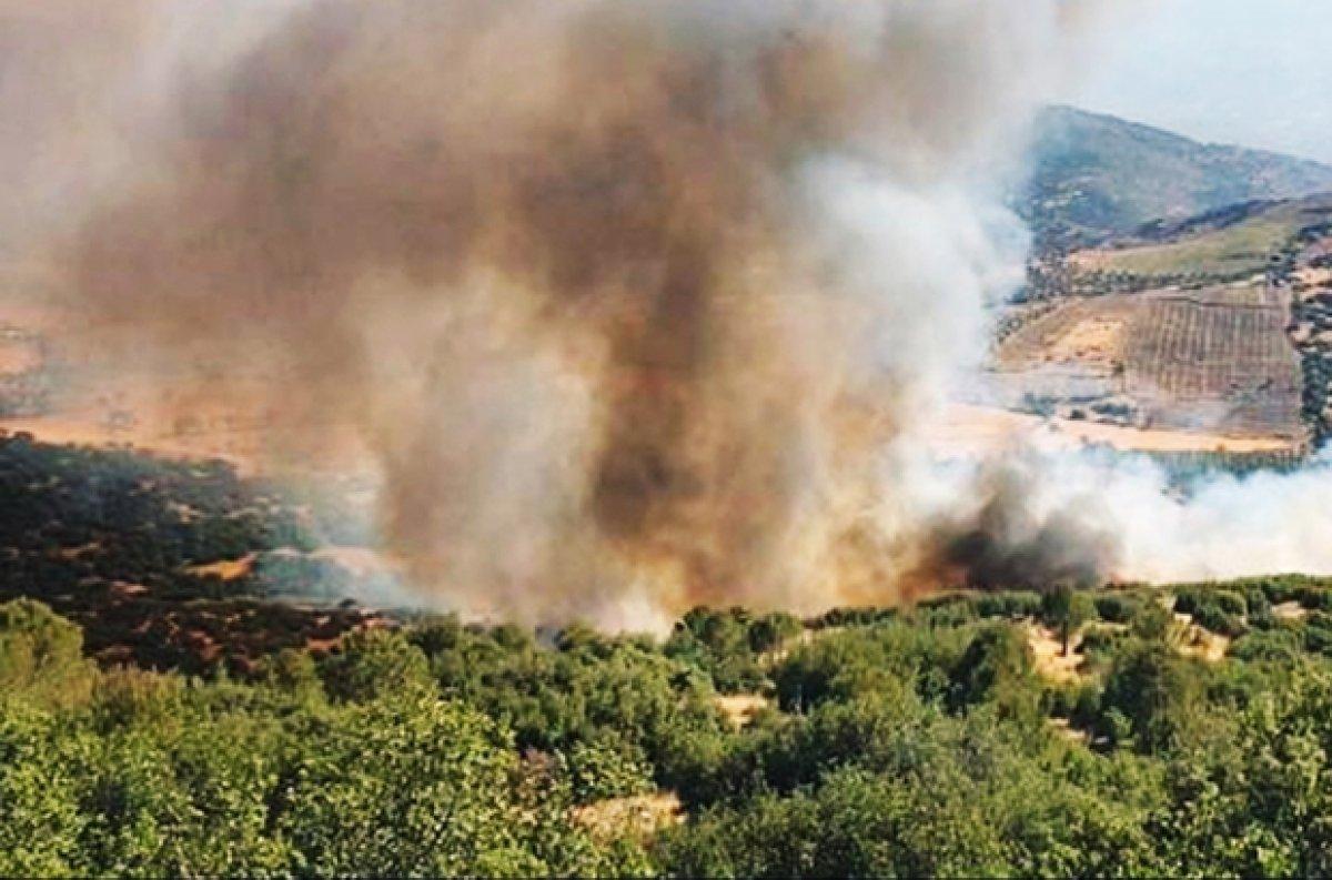 Muğla Köyceğiz yangını kontrol altına alındı #2