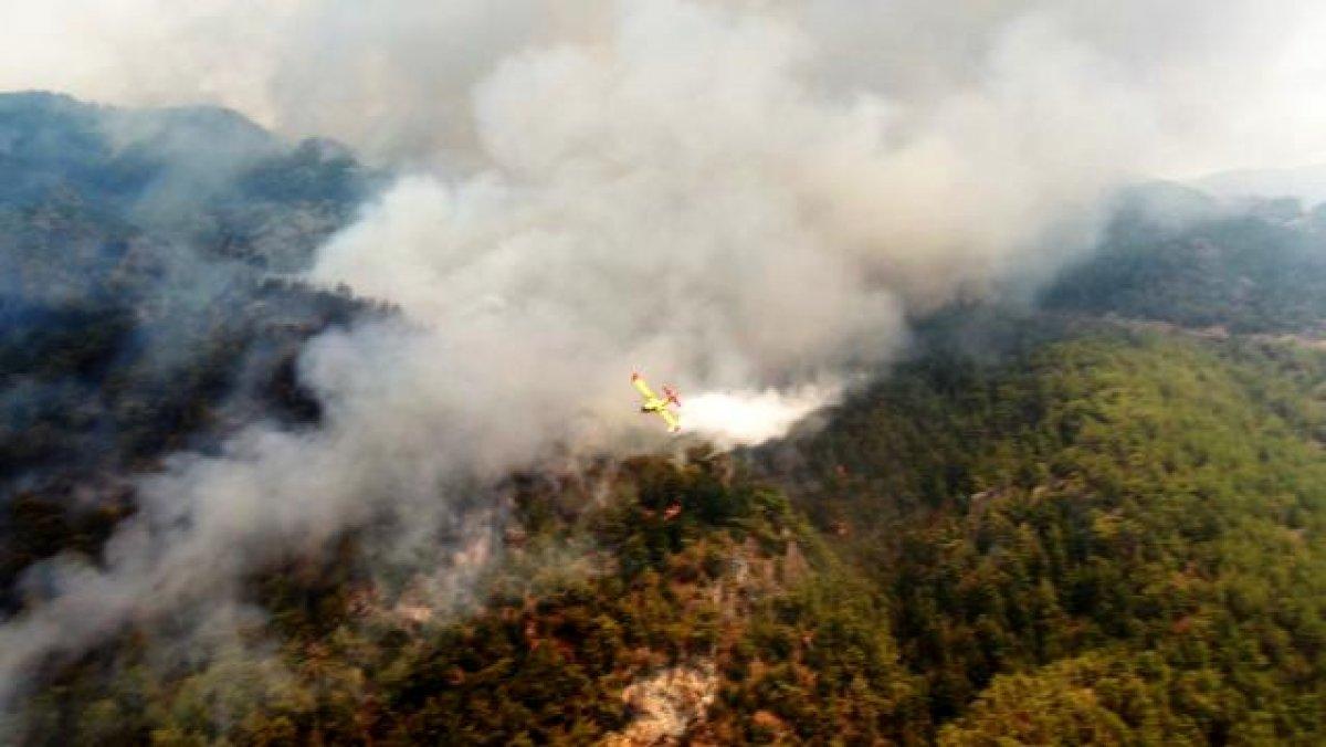 Muğla Köyceğiz yangını kontrol altına alındı #3
