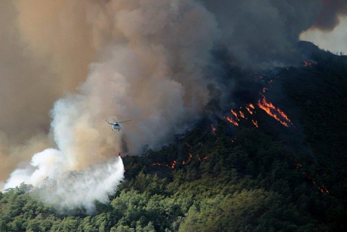 Muğla Köyceğiz yangını kontrol altına alındı #1