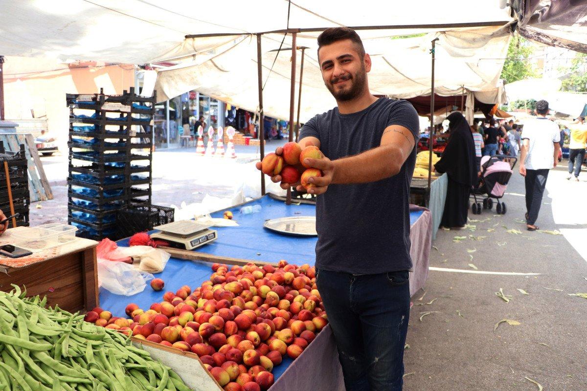 Şeftali ve nektarin bahçede 6 markette 18 lira #3