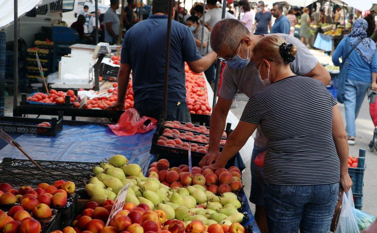 Şeftali ve nektarin bahçede 6 markette 18 lira #5