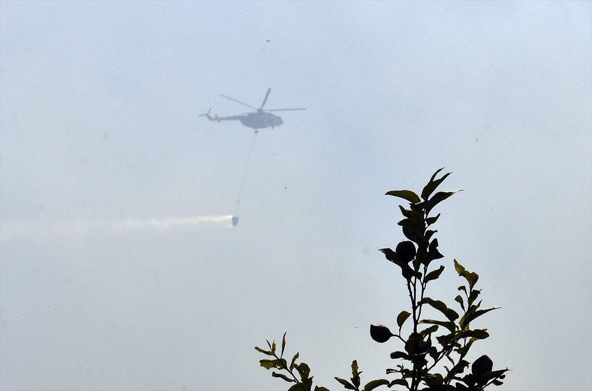 Bekir Pakdemirli: Tüm yangınlar kontrol altına alındı #3