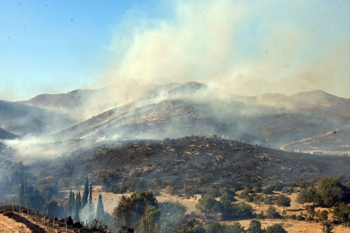 Bekir Pakdemirli: Tüm yangınlar kontrol altına alındı #2