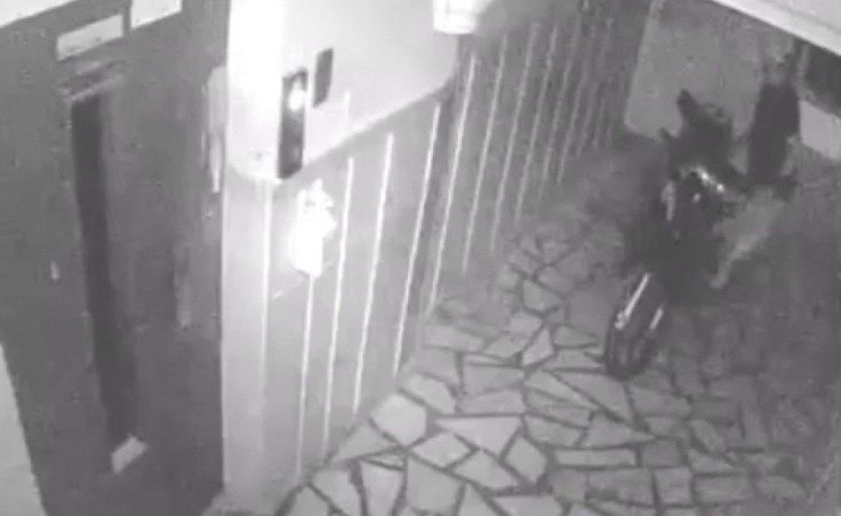 Osmaniye'de evlere dadanan hırsız yakalandı #3
