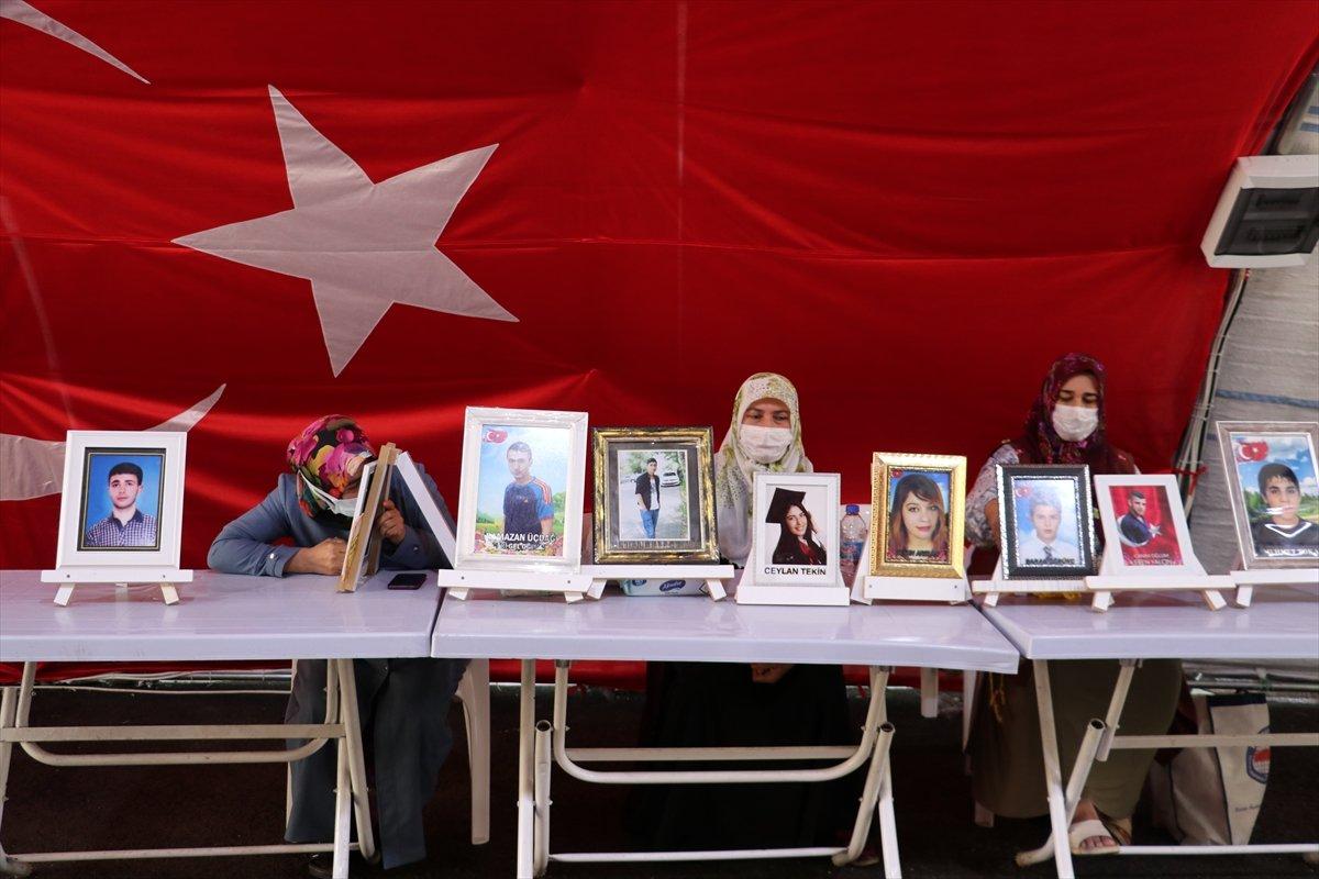 Diyarbakır annelerinin evlat nöbeti 711. gününde #3