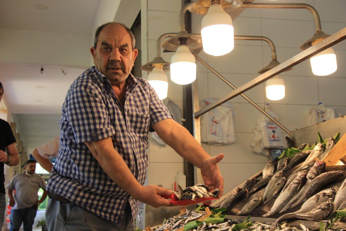 Kocaeli'de müşterisiz kalan balıkçı esnafı isyan etti #1
