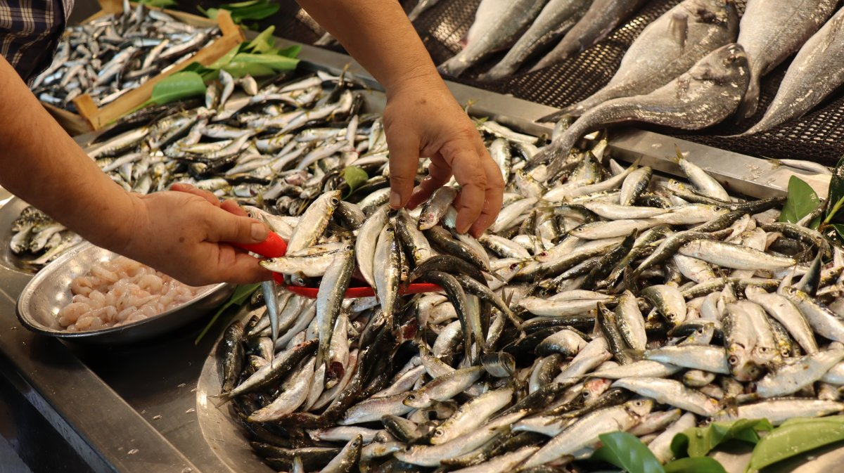 Kocaeli'de müşterisiz kalan balıkçı esnafı isyan etti #3