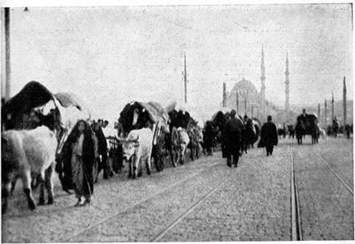 Vakanüvis yazdı: Göç, dünya tarihinde hep var oldu  #7