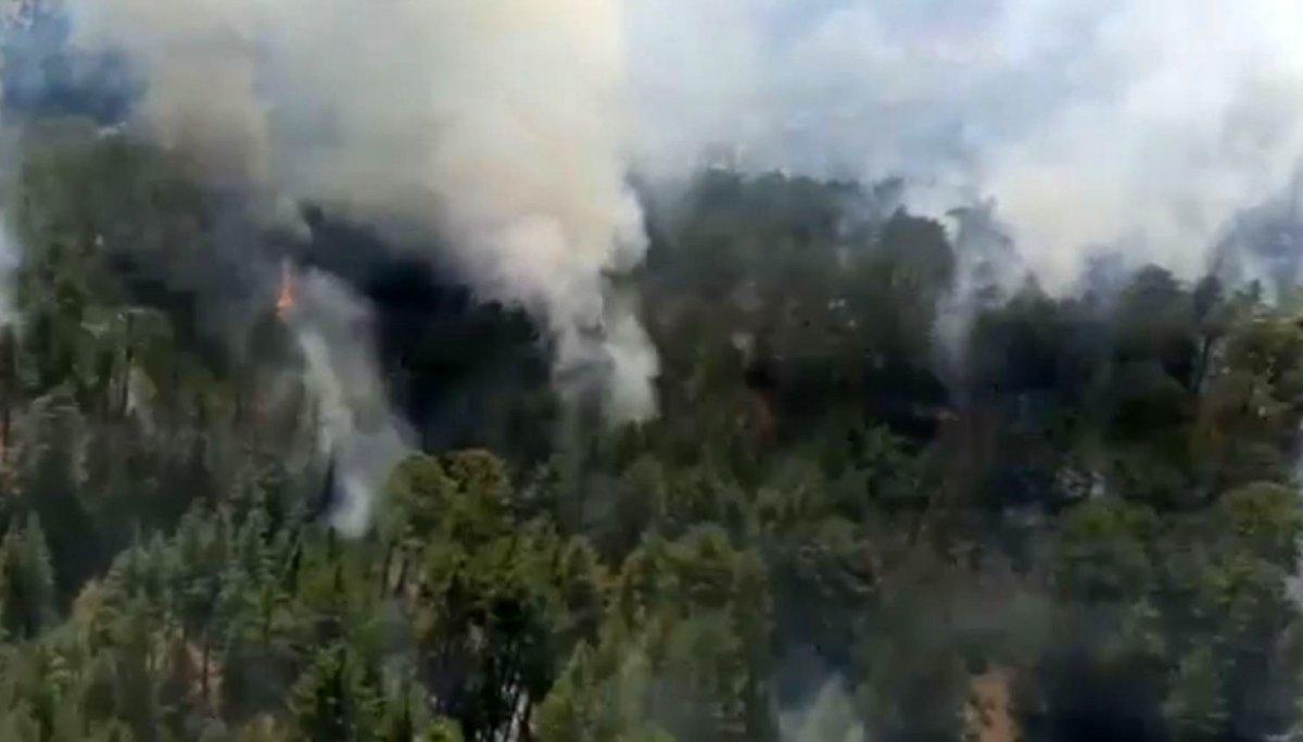 Antalya da orman yangını #2