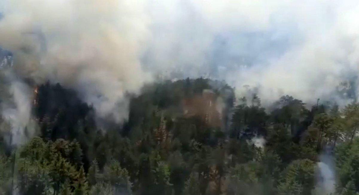 Antalya da orman yangını #1