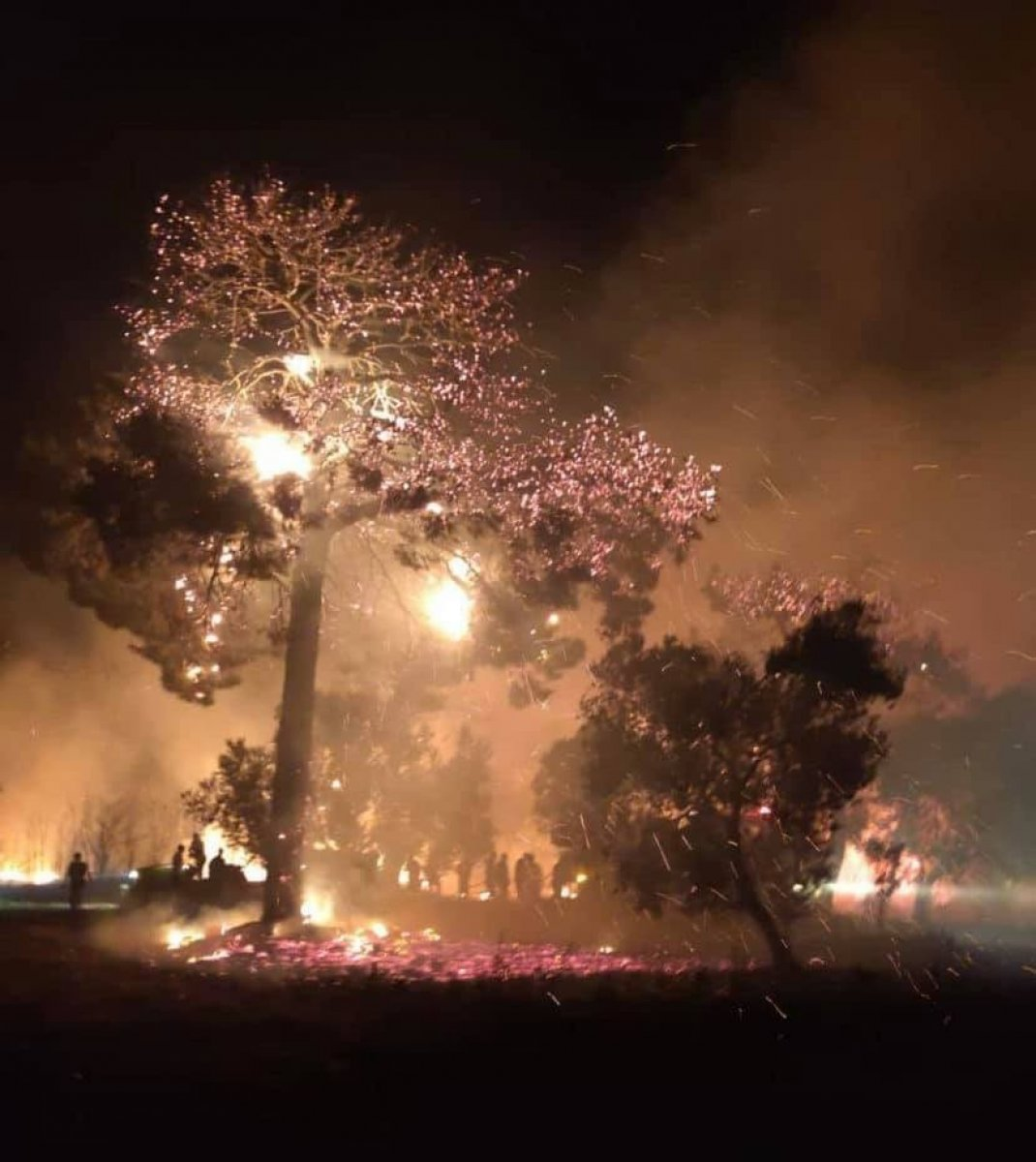 Çanakkale de başlayan yangın kontrol altına alındı #2