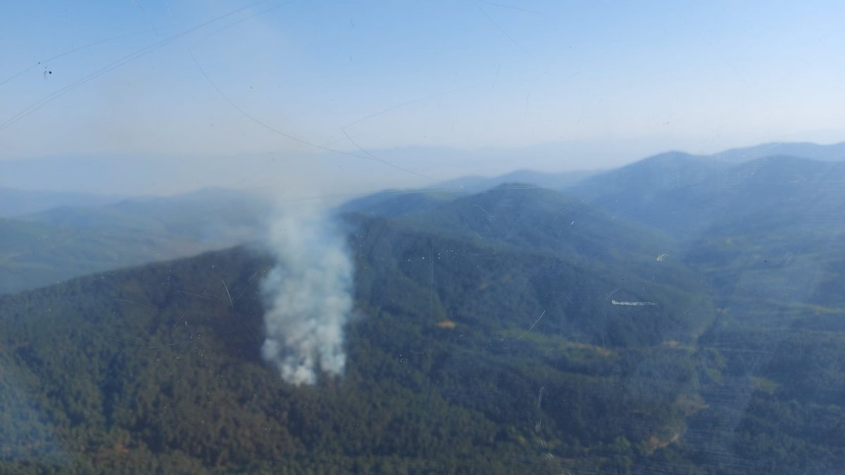 İzmir'deki orman yangını kontrol altında #1