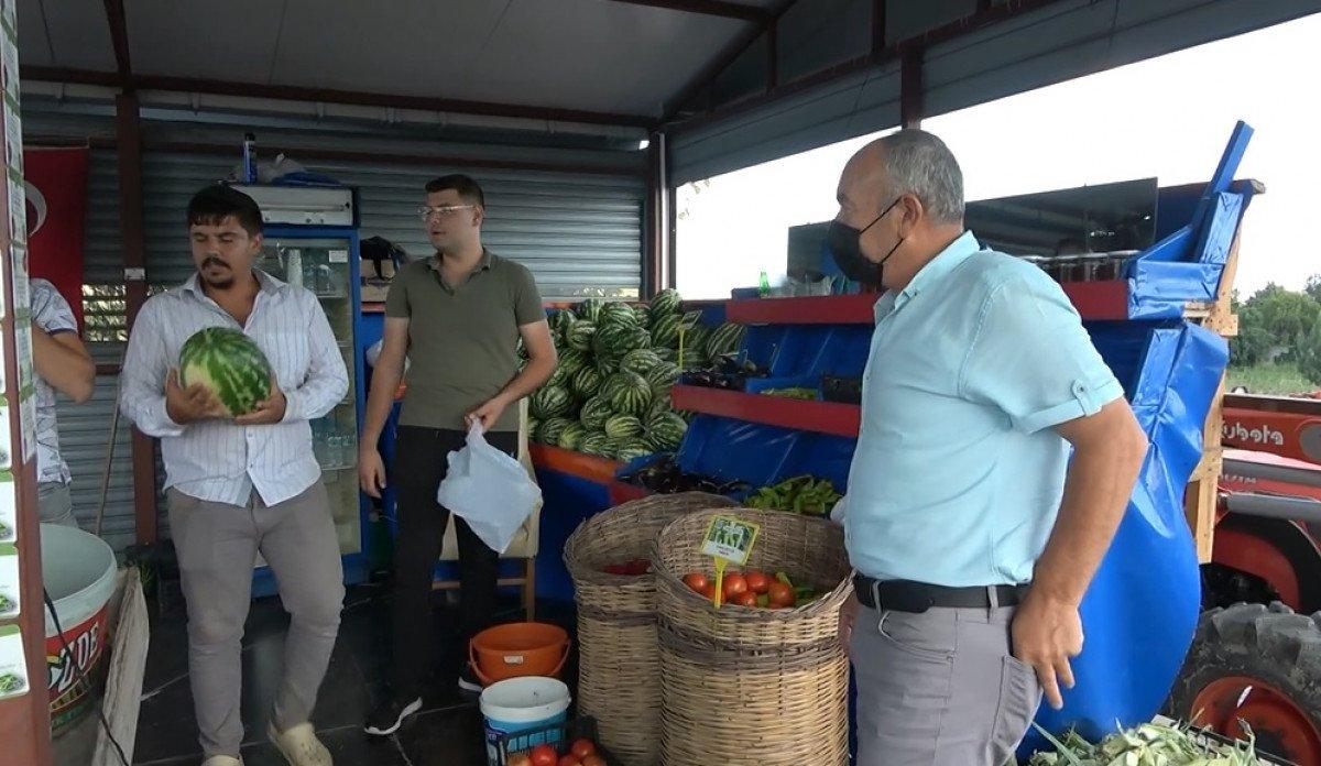 Müşteriler satın alacakları sebzeleri kendi elleri ile topluyor #1