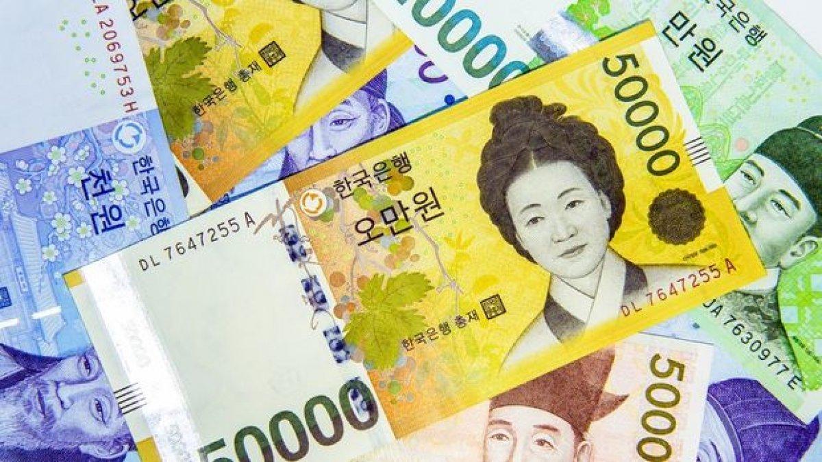 Merkez Bankası alım satıma konu dövizlere Güney Kore wonu eklendi #1