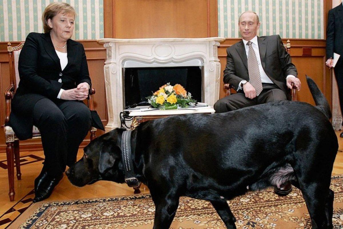 Angela Merkel den Vladimir Putin e veda ziyareti #2