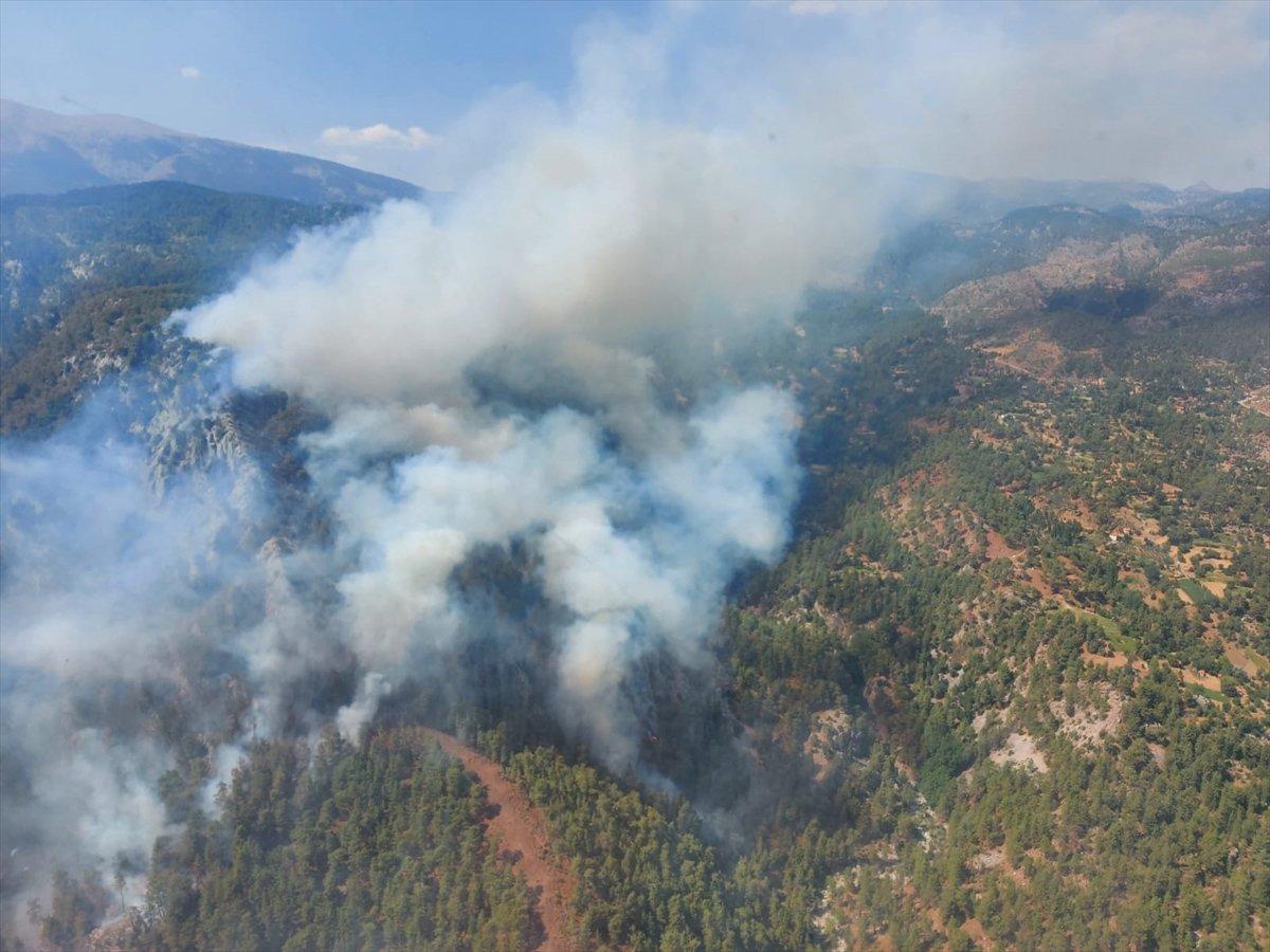 Köyceğiz deki orman yangını kontrol altına alındı #1