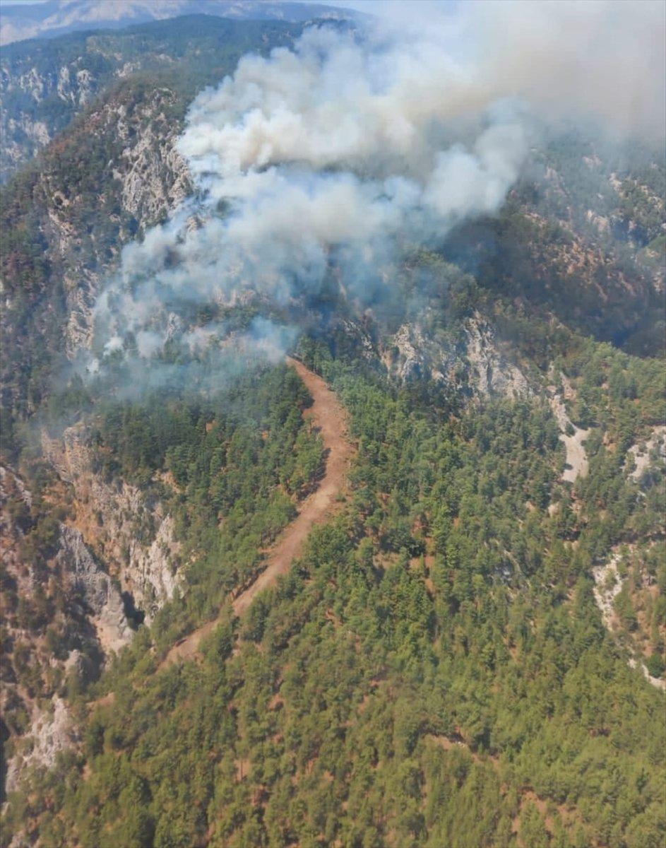 Köyceğiz deki orman yangını kontrol altına alındı #2