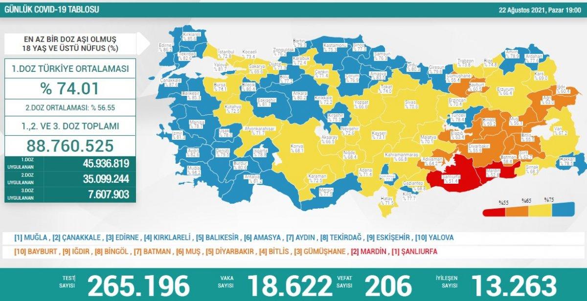 22 Ağustos Türkiye de koronavirüs tablosu #1