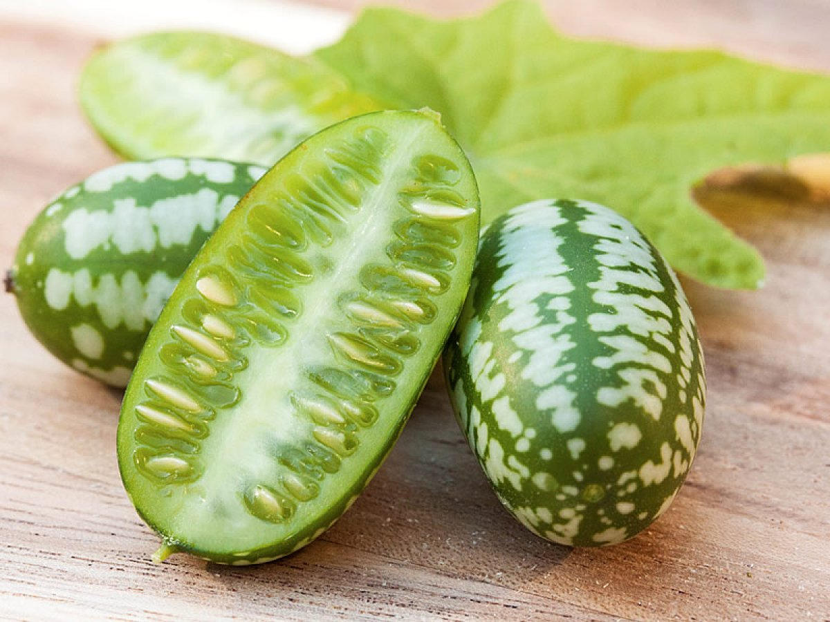Dışı karpuz içi salatalık: Cucamelon meyvesinin faydaları #1