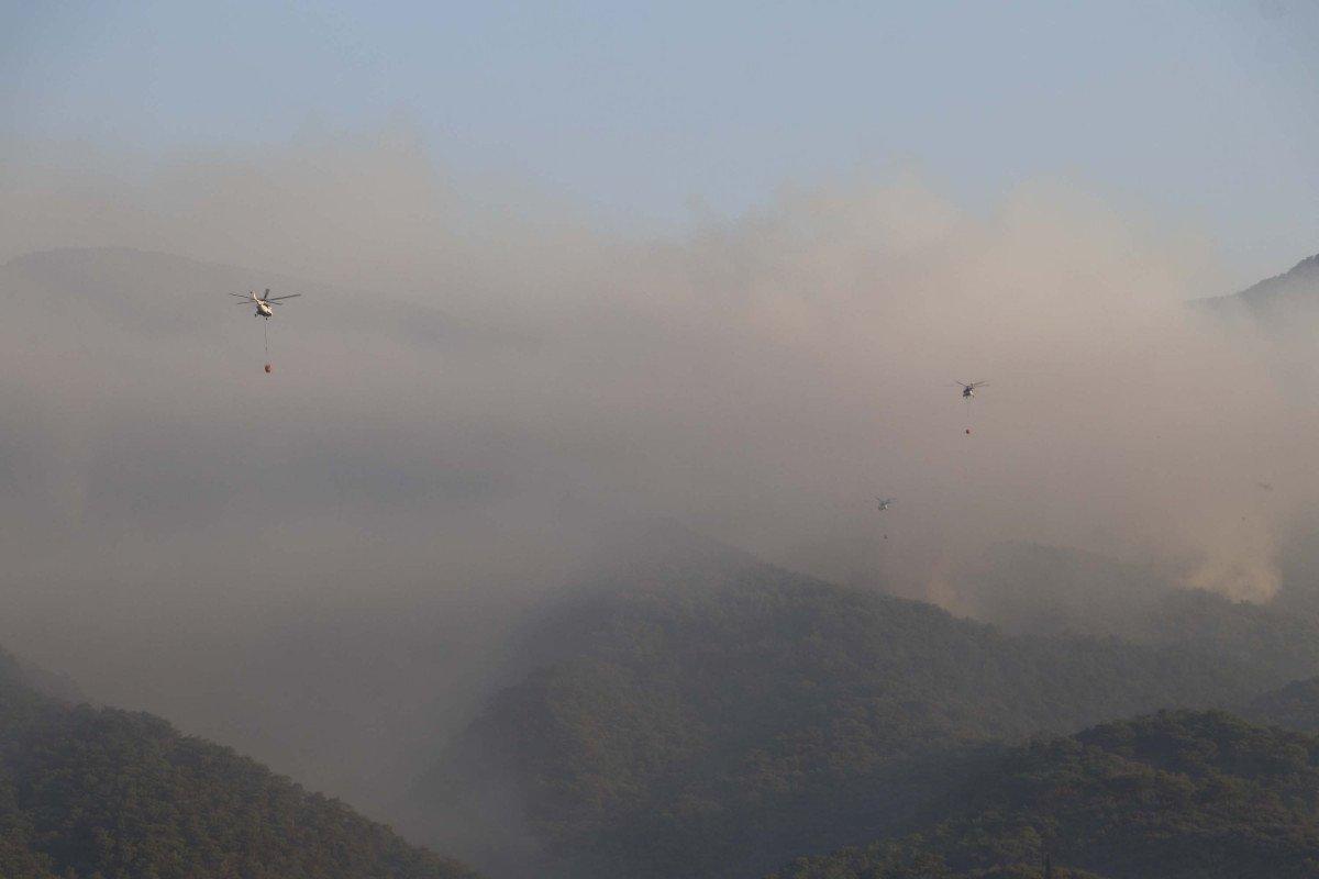 Kaz Dağları'nda yangın devam ediyor #3