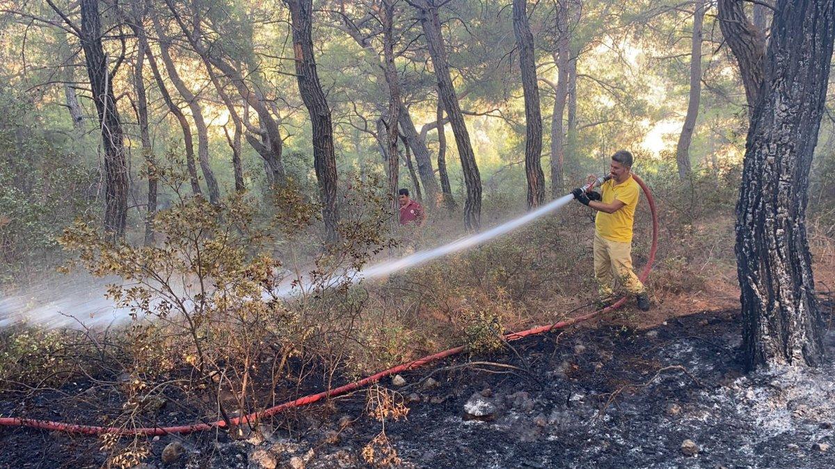 Muğla daki yangın kontrol altına alındı #3