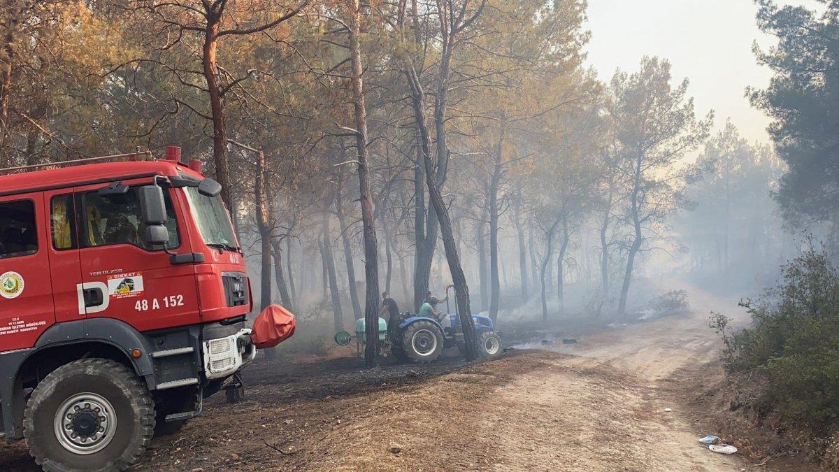 Muğla daki yangın kontrol altına alındı #1