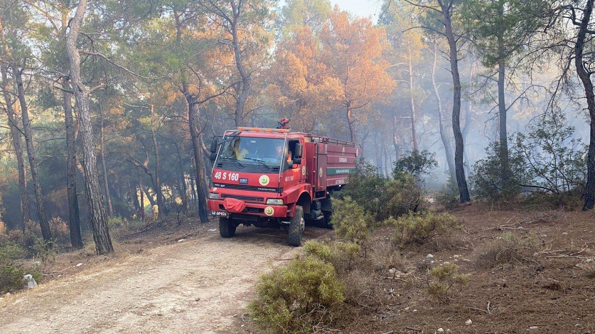 Muğla daki yangın kontrol altına alındı #4