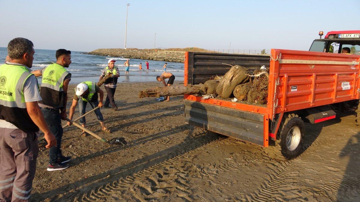 Sinop taki tomruklar Samsun sahillerinde: 200 km sürüklendiler #2