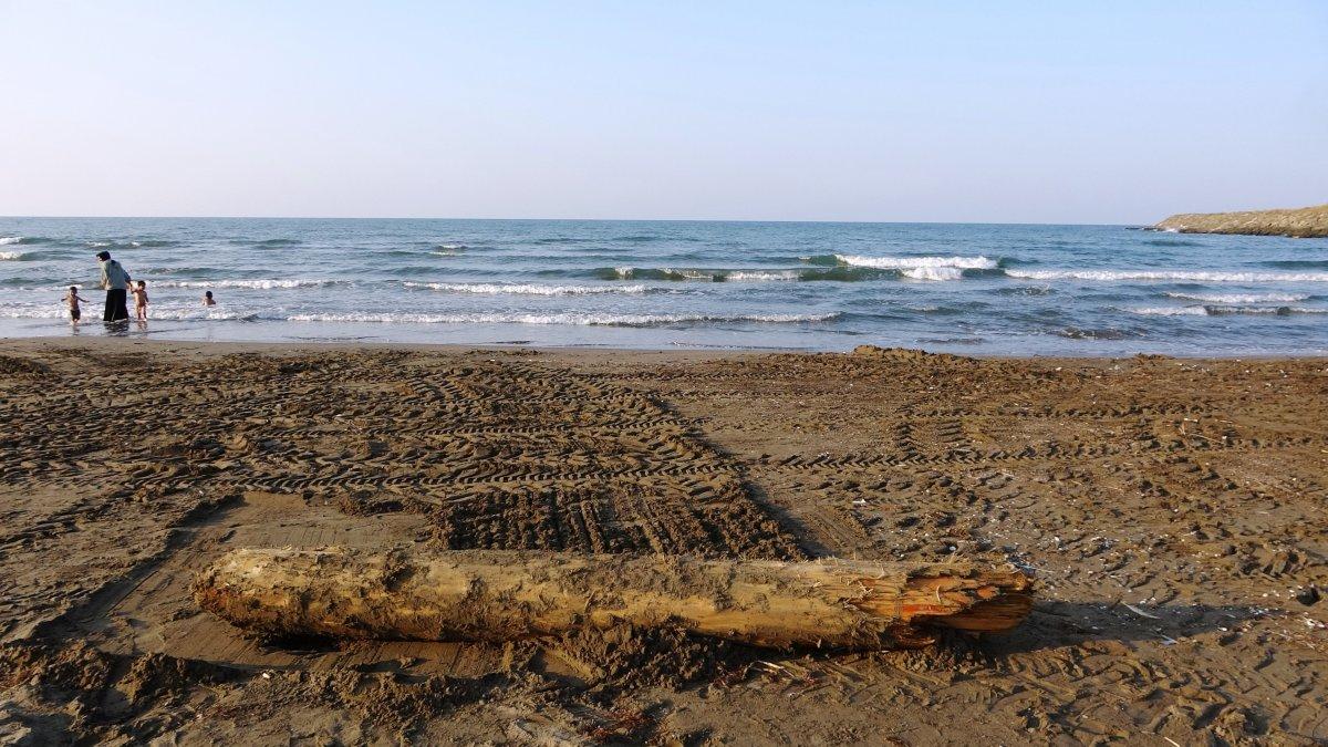 Sinop taki tomruklar Samsun sahillerinde: 200 km sürüklendiler #3