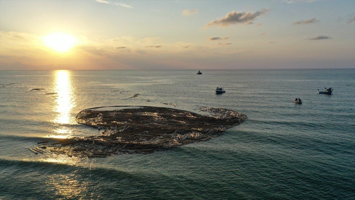 Sel felaketinde sahile vuran tomruklar temizlenmeye başladı #1