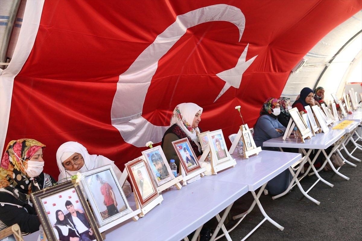 Diyarbakır annelerinin nöbeti, 723'üncü gününde  #3